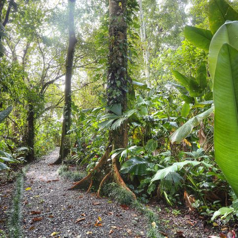 The best in nature of Costa Rica