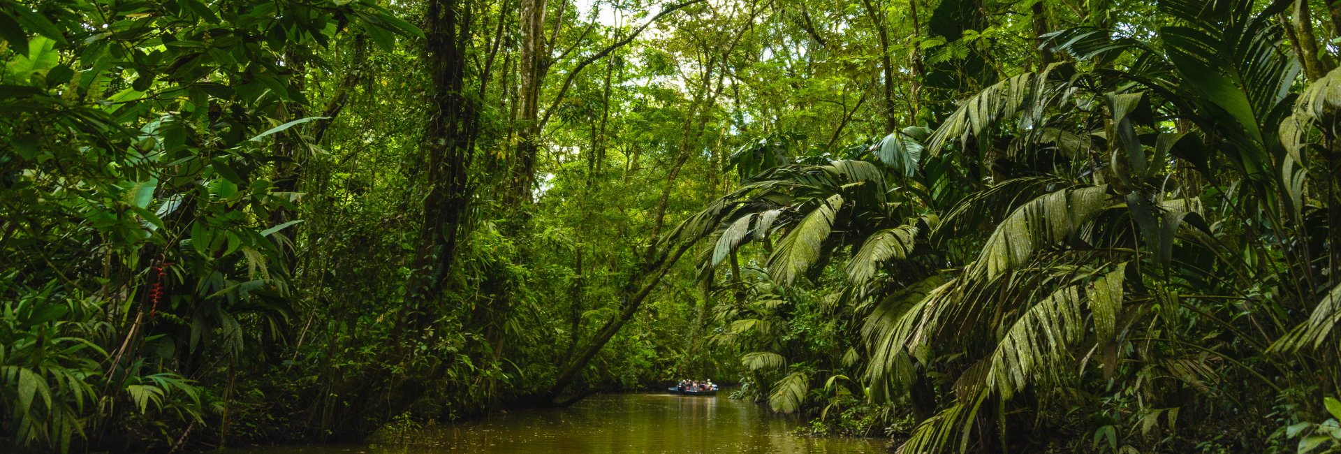 Tortuguero Canals in Costa Rica