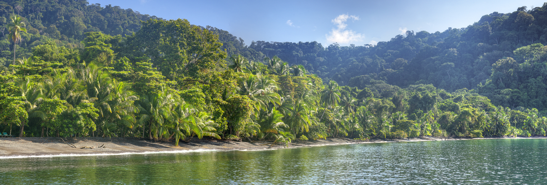 Inmerse into the nature in Costa Rica
